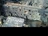 ISUZU ELF DUMP TRUCK 2002 Image 27