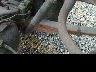 ISUZU ELF DUMP TRUCK 2003 Image 25