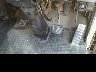 ISUZU ELF DUMP TRUCK 2001 Image 19